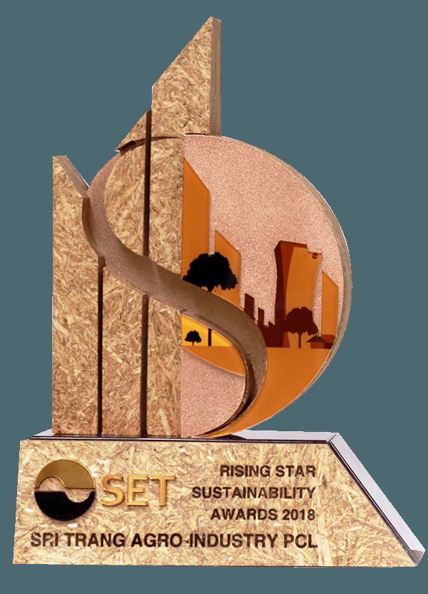 2018  Set Rising Star Sustainability Award